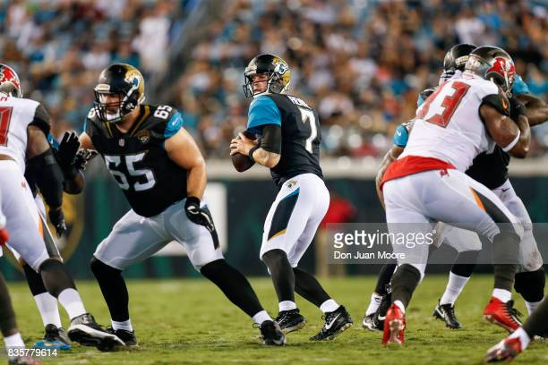 Quarterback Chad Henne of the Jacksonville Jaguars fade back for a pass play during the game against the Tampa Bay Buccaneers at EverBank Field on...
