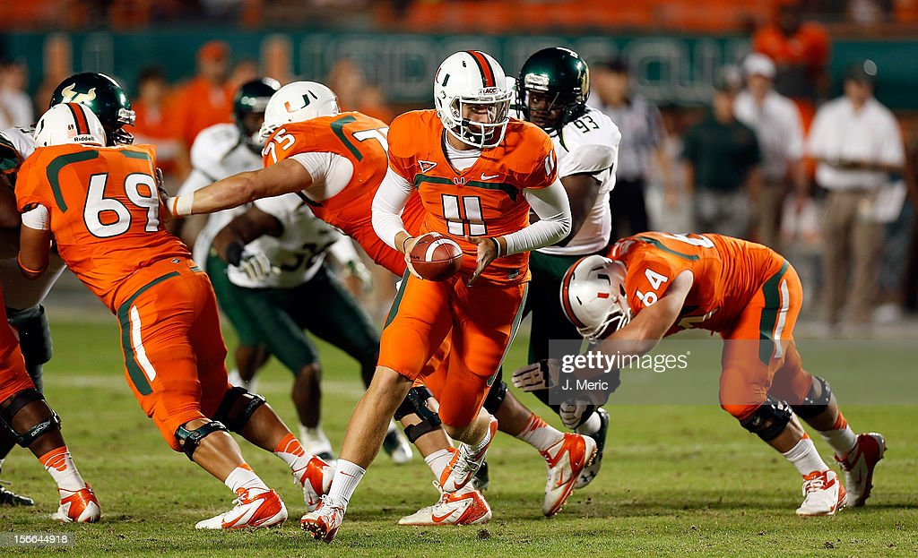 Quarterback Ryan Williams #11 of the Miami Hurricanes hands the ball off against the South Florida Bulls during the game at Sun Life Stadium on November 17, 2012 in Miami Gardens, Florida.