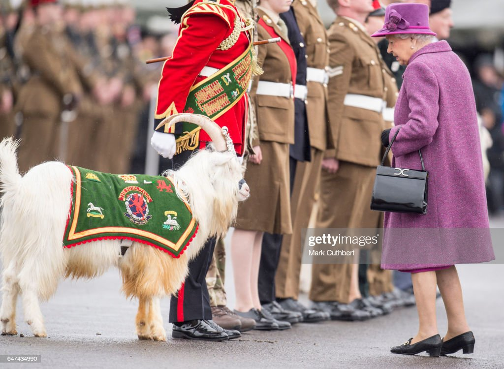 Queen Elizabeth II admires the Regimental Goat as she attends a review and presents Leeks to The Royal Welsh to mark St David's Day at Lucknow Barracks on March 3, 2017 in Tidworth, England.