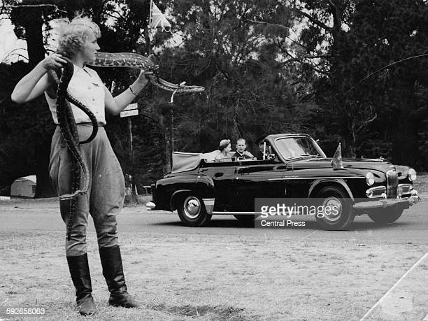 Queen Elizabeth II and the Duke of Edinburgh riding in the back of an open car as they watch Australia's Snake Girl Shirley Weston in action during a...