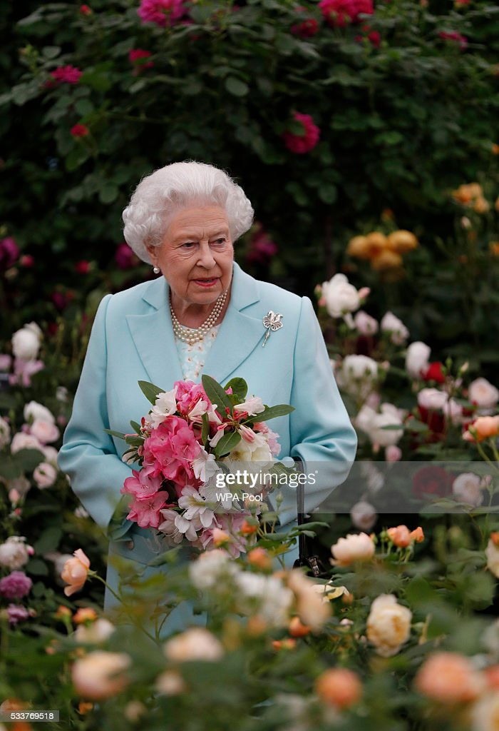 Last day of the 2016 chelsea flower show getty images - Royal flower show ...