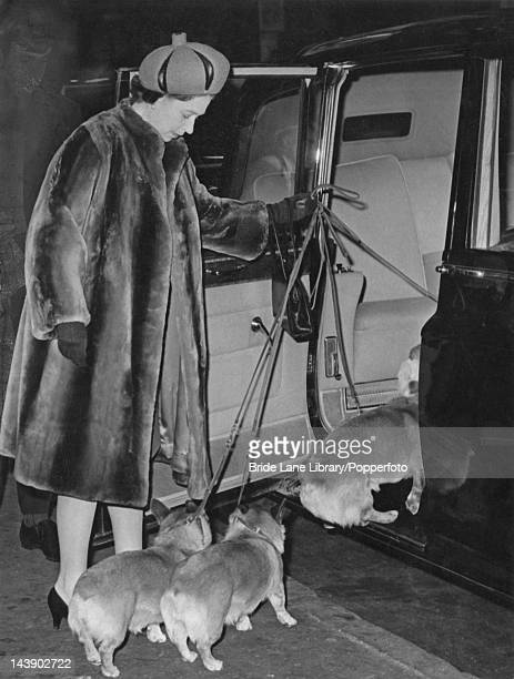 Queen Elizabeth II follows her three corgis into a car at Liverpool Street station London 8th February 1968 The Queen is returning from a holiday at...