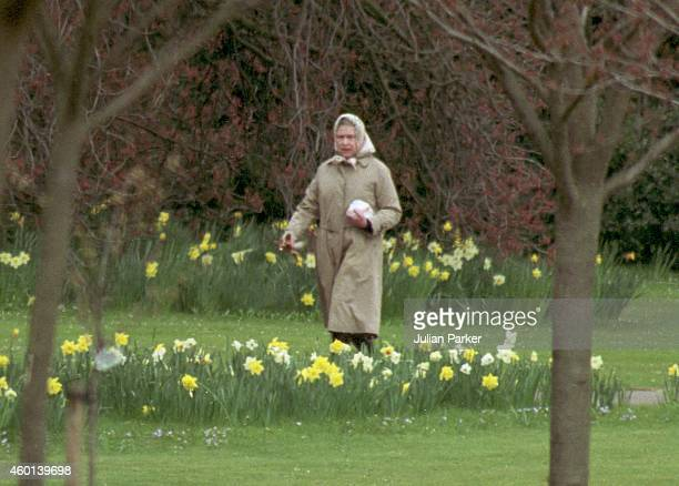 Queen Elizabeth II heads for the stables at Windsor Castle for her morning ride on March 27 1993 in Windsor United Kingdom