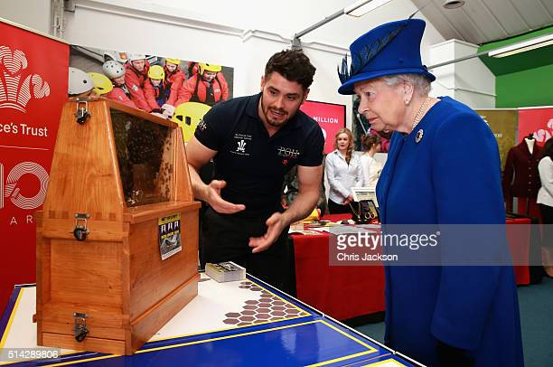 Queen Elizabeth II is shown the Queen Bee in a swarm of 30000 by Peter Higgs of PGH Pest Control at the Prince's Trust Centre in Kennington on March...