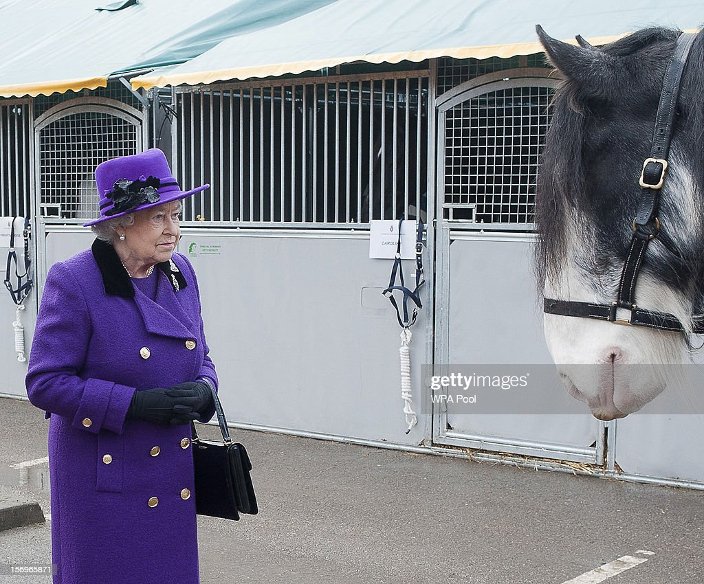 Queen <a gi-track='captionPersonalityLinkClicked' href=/galleries/search?phrase=Elizabeth+II&family=editorial&specificpeople=67226 ng-click='$event.stopPropagation()'>Elizabeth II</a> looks at a horse as she meets members of the Household Cavalry at Combermere Barracks on November 26, 2012 in Windsor, England.