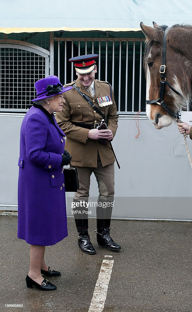 Queen Elizabeth II looks at a horse as she meets members of the Household Cavalry at Combermere Barracks on November 26, 2012 in Windsor, England.
