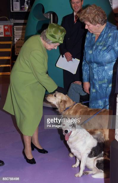 Queen Elizabeth II meeting some of the current pets of the Blue Peter series golden retriever Lucy and Mabel with their keeper Leonie Pocock when she...