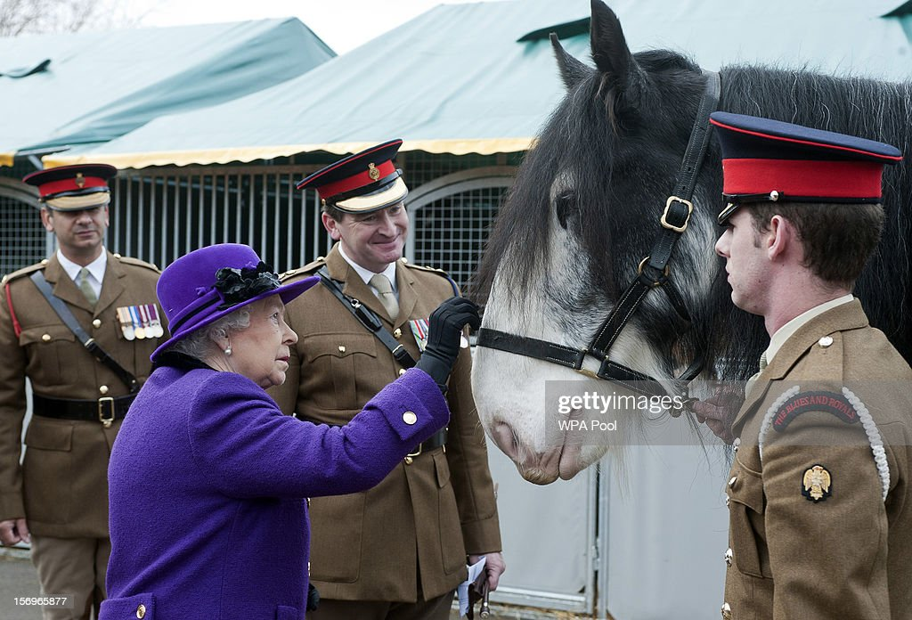 Queen <a gi-track='captionPersonalityLinkClicked' href=/galleries/search?phrase=Elizabeth+II&family=editorial&specificpeople=67226 ng-click='$event.stopPropagation()'>Elizabeth II</a> pets a horse as she meets members of the Household Cavalry at Combermere Barracks on November 26, 2012 in Windsor, England.