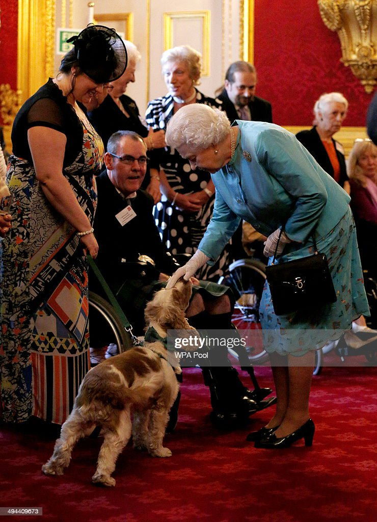 Queen Elizabeth II pets Harris, a PAT dog, during a reception for Leonard Cheshire Disability in the State Rooms, St James's Palace on May 29, 2014 in London, England.