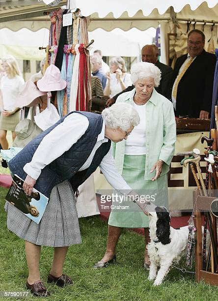 Queen Elizabeth II strokes a cocker spaniel dog while browsing the show stalls on the second day of the Royal Windsor Horse Show on May 12 2006 in...