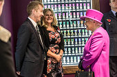 Queen Elizabeth II talks to a Sharon and Ephram Brynin the parents of L/Cpl James Brynin who were presented with the Elizabeth cross following the...