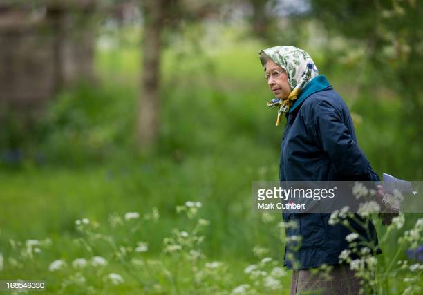 Queen Elizabeth II walks in the grounds at Windsor Castle during The Royal Windsor Horse Show on May 11 2013 in Windsor England