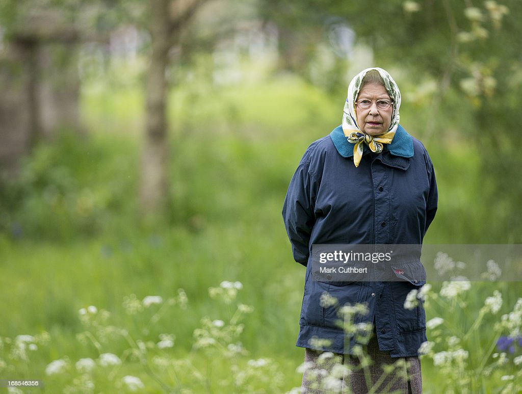 Queen <a gi-track='captionPersonalityLinkClicked' href=/galleries/search?phrase=Elizabeth+II&family=editorial&specificpeople=67226 ng-click='$event.stopPropagation()'>Elizabeth II</a> walks in the grounds at Windsor Castle during The Royal Windsor Horse Show on May 11, 2013 in Windsor, England.