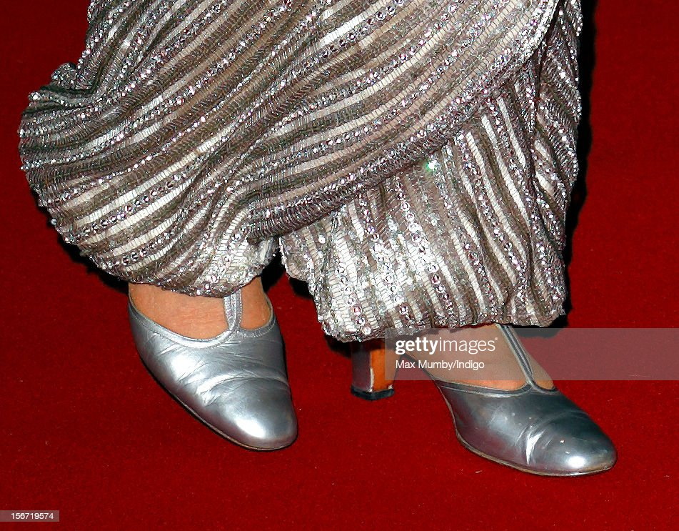 Queen <a gi-track='captionPersonalityLinkClicked' href=/galleries/search?phrase=Elizabeth+II&family=editorial&specificpeople=67226 ng-click='$event.stopPropagation()'>Elizabeth II</a> wears silver coloured evening shoes as she attends the Royal Variety Performance, in the 100th anniversary year, at the Royal Albert Hall on November 19, 2012 in London, England.