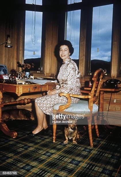 Queen Elizabeth II with her dogs in her study 1972