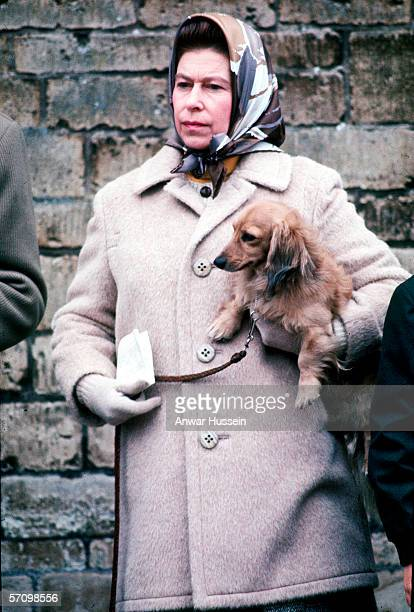 Queen Elizabeth II with one of her favourite dogs at the Badminton Horse Trials in April 1976