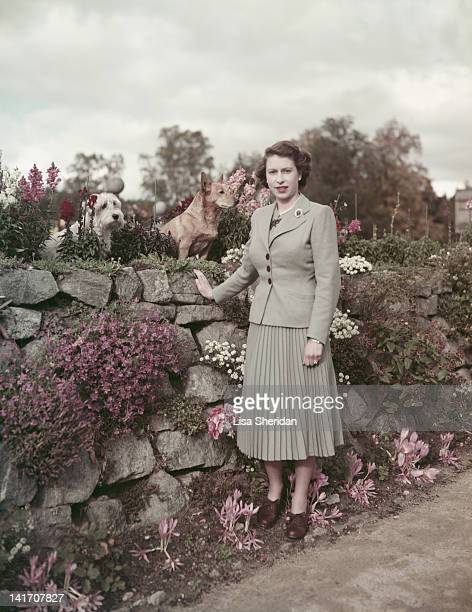 Queen Elizabeth II with two dogs at Balmoral Castle in Scotland 28th September 1952