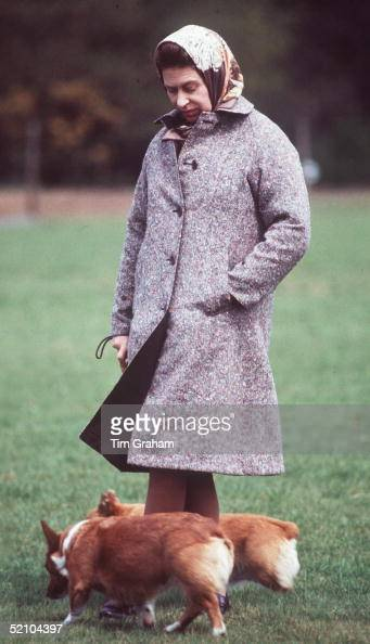 Queen Elizabeth II With Two Of Her Corgis In The Grounds Of Windsor Castle These Dogs Are Her Favourite Breed