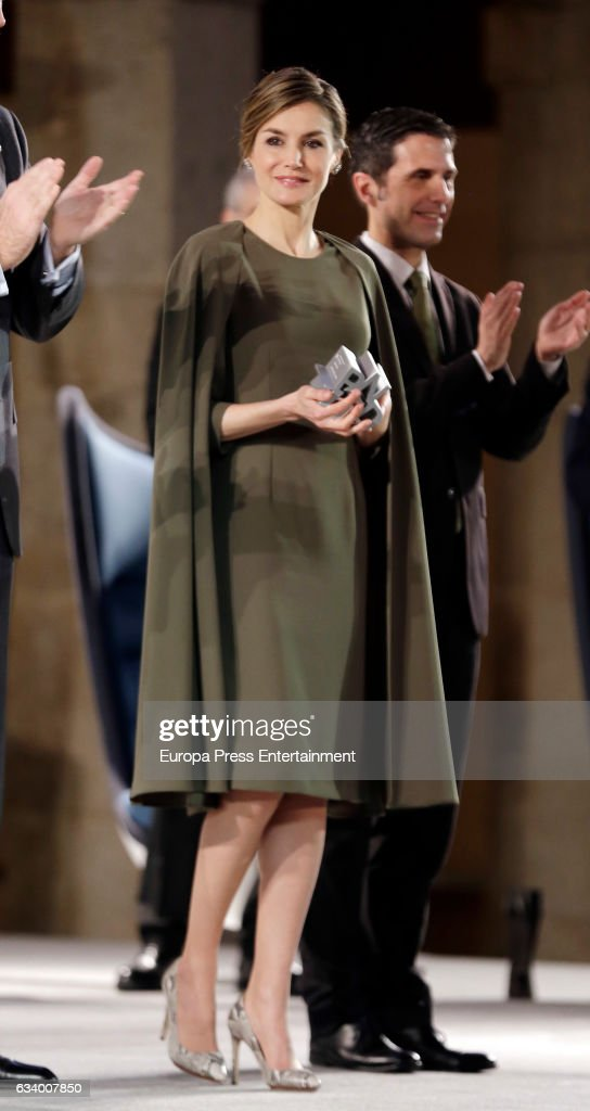 Queen Letizia of Spain attends 2016 Innovation and Design Awards on February 6, 2017 in Alcala de Henares, Spain.