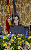 Spanish Royals Attend A Meeting at The National Library...