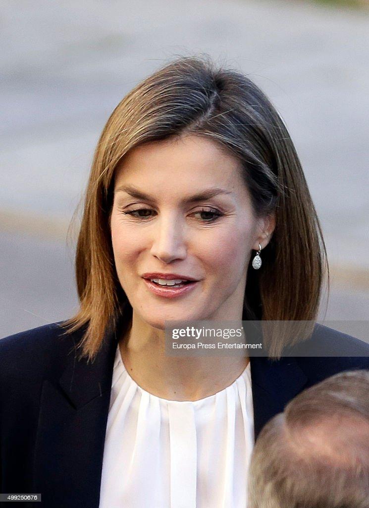 Queen Letizia of Spain attends Nutrigenomica Seminar at Consejo Superior de Investigaciones Cientificas on November 30, 2015 in Madrid, Spain.