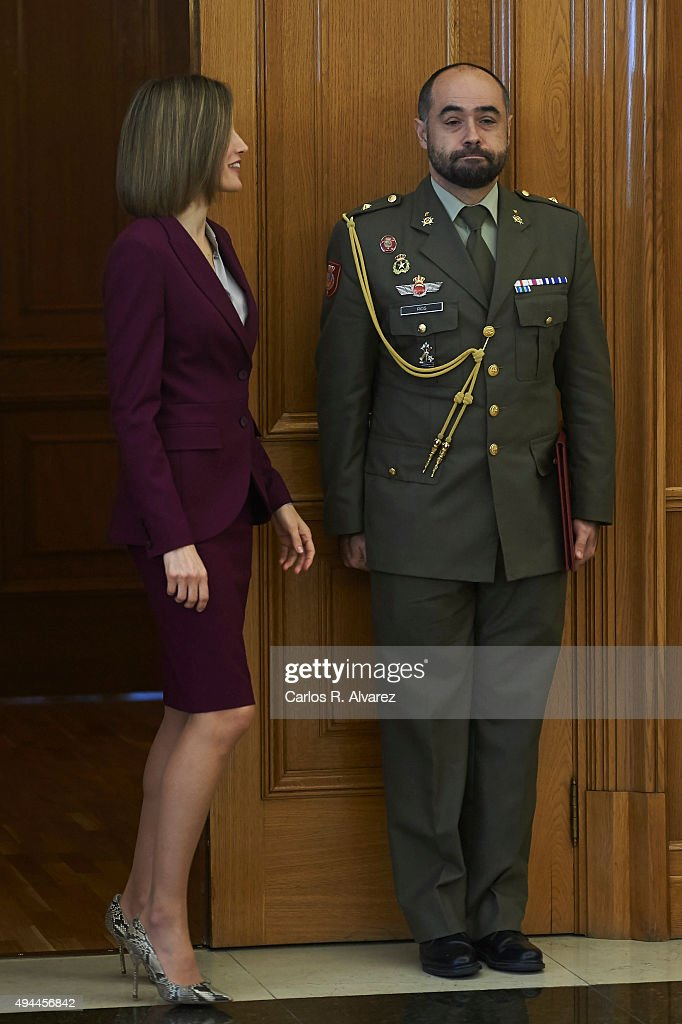 Queen Letizia of Spain attends several audiences at the Zarzuela Palace on October 27, 2015 in Madrid, Spain.