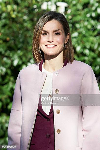 Queen Letizia of Spain visits the FAD on January 12 2016 in Madrid Spain