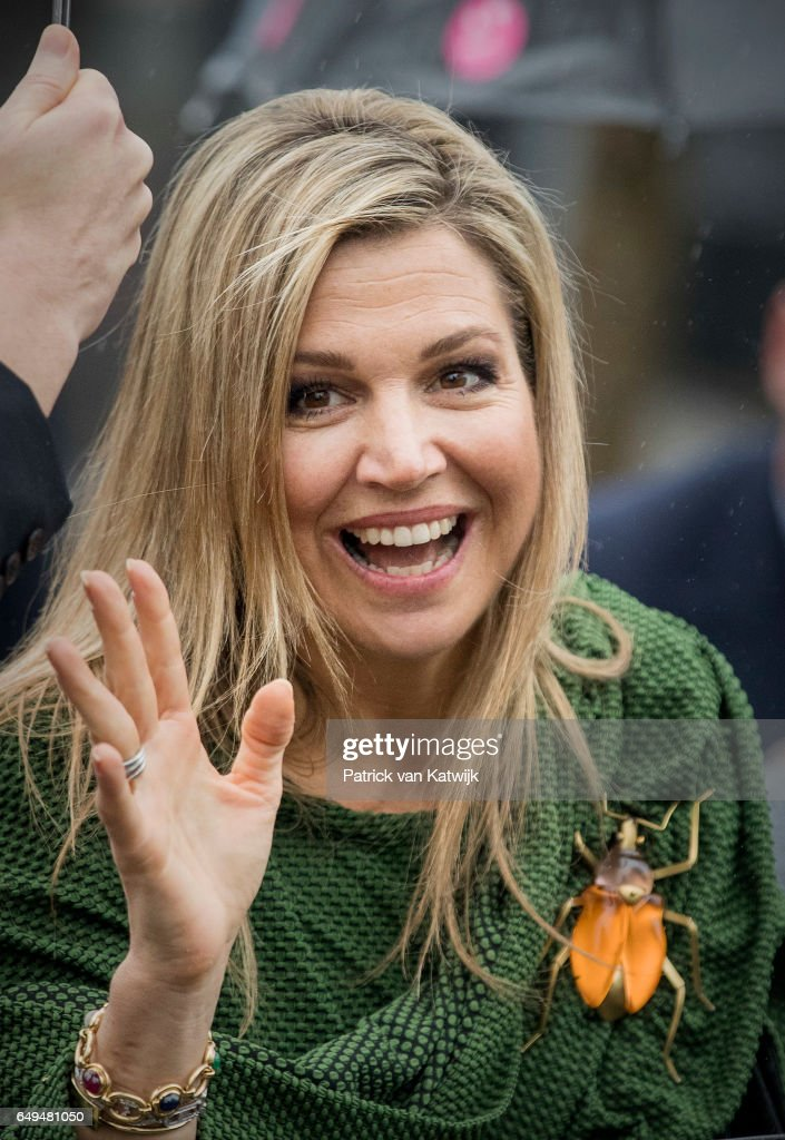 queen-maxima-of-the-netherlands-attends-a-meeting-at-foundation-on-picture-id649481050