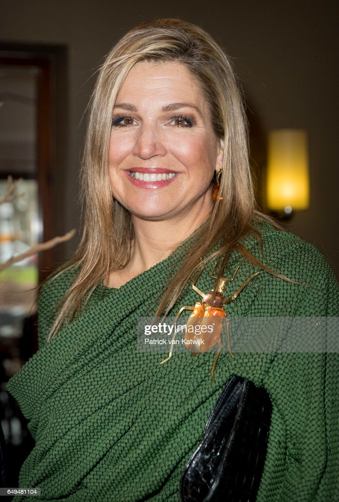 queen-maxima-of-the-netherlands-attends-a-meeting-at-foundation-on-picture-id649481104