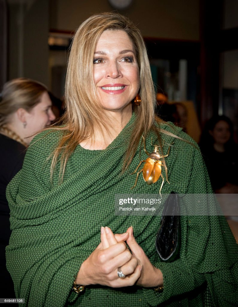 queen-maxima-of-the-netherlands-attends-a-meeting-at-foundation-on-picture-id649481106