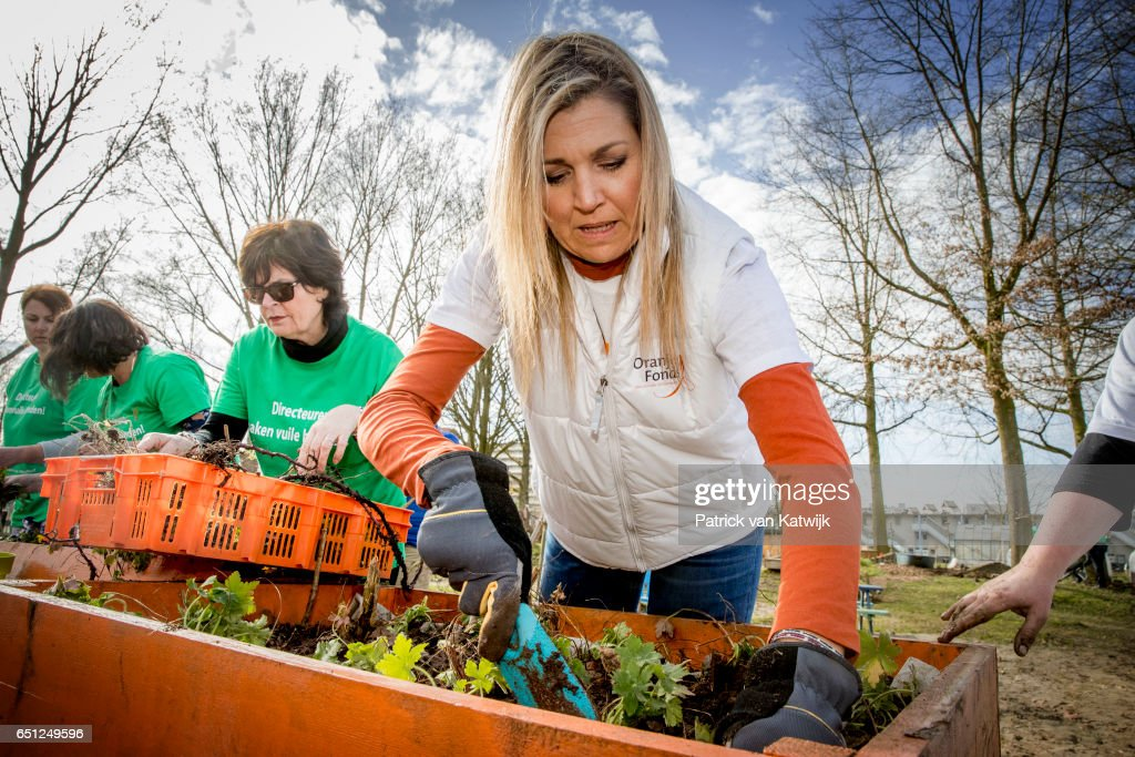 Queen Maxima of the Netherlands volunteering for NL Doet in the neighborhood garden on March 08, 2017 in Breda, Netherlands. NL Doet is a National Volunteer day organized by the Oranje Fonds, the King and the Queen are patron and patroness of the foundation.