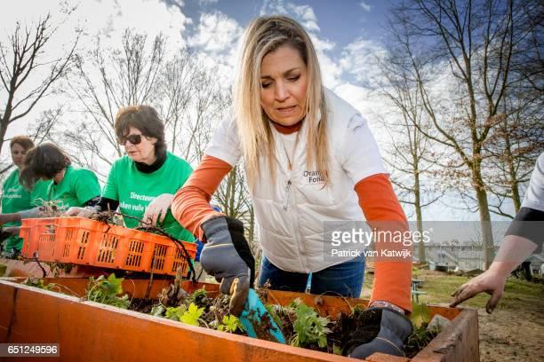 Queen Maxima of the Netherlands volunteering for NL Doet in the neighborhood garden on March 08 2017 in Breda Netherlands NL Doet is a National...