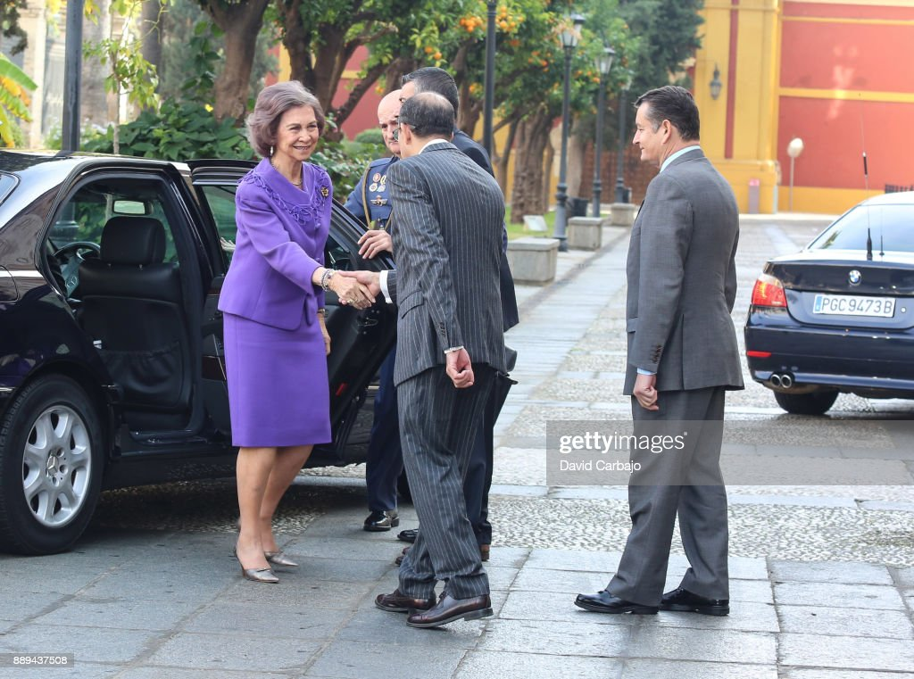 Queen Sofia Attends 'Juan Antonio Carrillo Salcedo To Human Rights' Awards in Seville