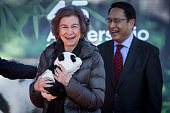 Queen Sofia Attends Official Act For The Conservation...