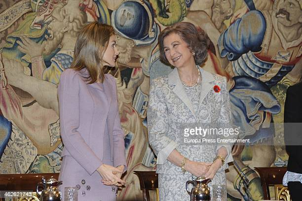 Queen Sofia of Spain and Princess Letizia of Spain attend 'Civil Awards Order Of Social Solidarity 2012' at Zarzuela Palace on January 14 2014 in...