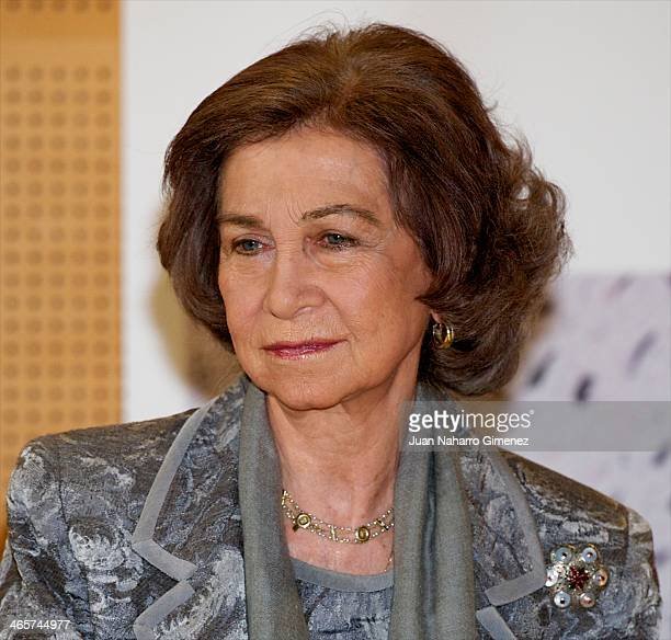 Queen Sofia of Spain attends a meeting with Foundation Research Center of Neurological Diseases for early diagnosis of Alzheimer at Alzheimer Center...