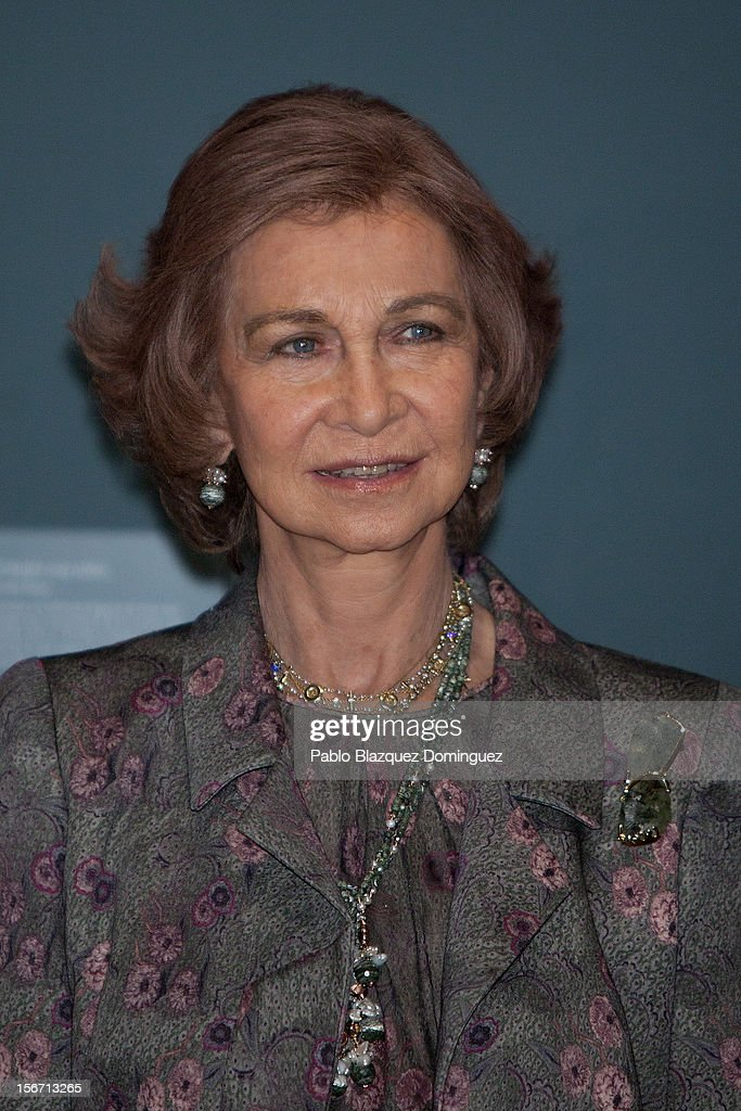 <a gi-track='captionPersonalityLinkClicked' href=/galleries/search?phrase=Queen+Sofia+of+Spain&family=editorial&specificpeople=160333 ng-click='$event.stopPropagation()'>Queen Sofia of Spain</a> attends 'El Joven Van Dyck' exhibition at the Prado Museum on November 19, 2012 in Madrid, Spain.