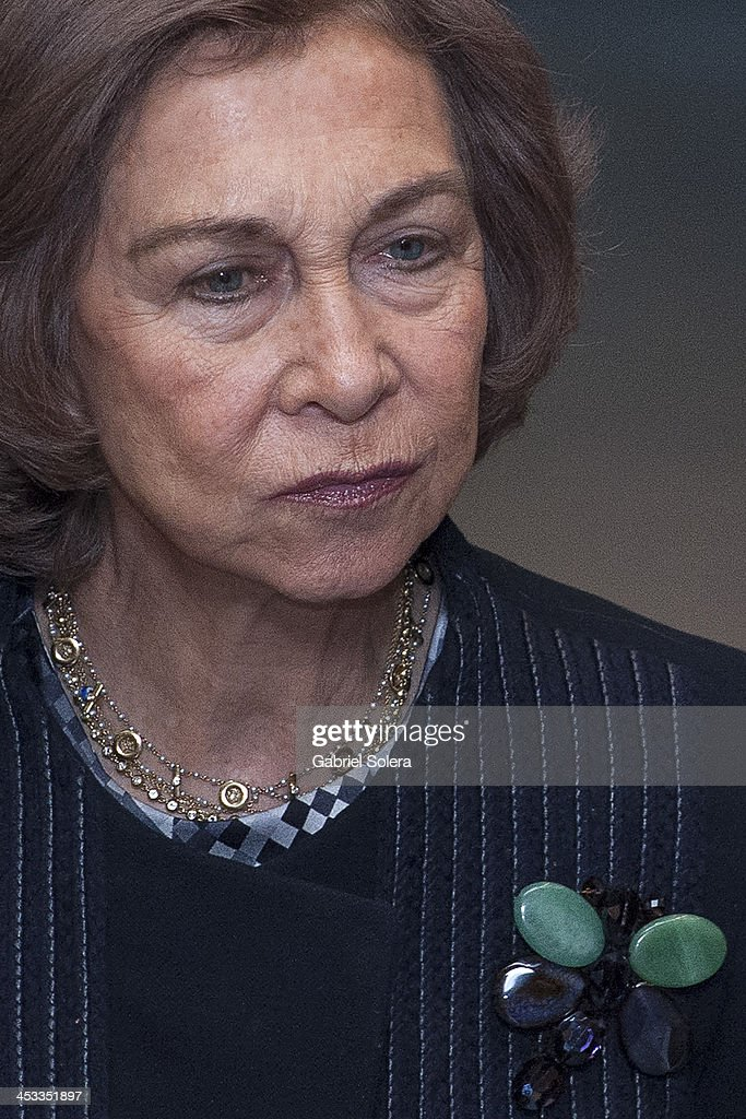 Queen Sofia of Spain attends 'Network of Cities For Accesibility' at Ministry of Health on December 3, 2013 in Madrid, Spain.
