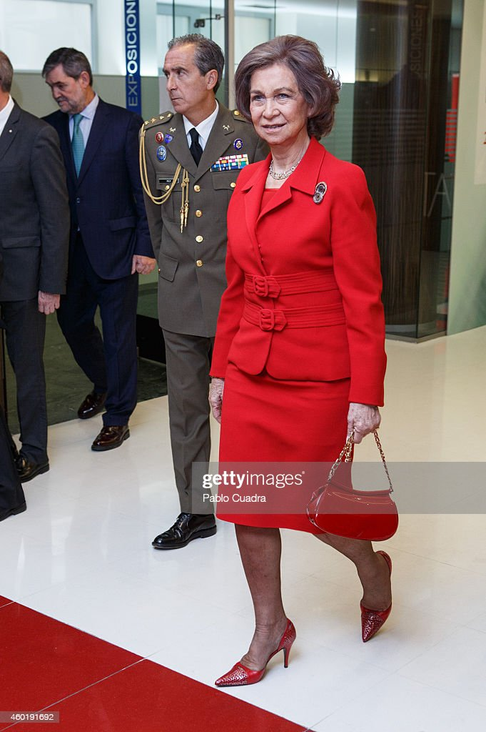 Queen Sofia of Spain attends 'Queen Sofia Against Drugs' awards ceremony at the Red Cross foundation building on December 9, 2014 in Madrid, Spain.