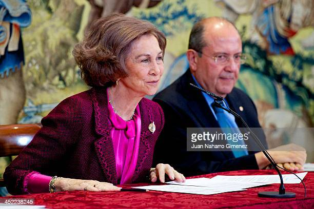 Queen Sofia of Spain attends 'Reina Sofia Awards Against Drugs' 2013 at Zarzuela Palace on November 27 2013 in Madrid Spain