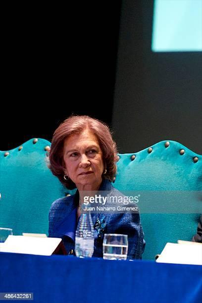 Queen Sofia of Spain attends 'Talavera City' awards at Palenque Theater on April 24 2014 in Talavera de la Reina Spain