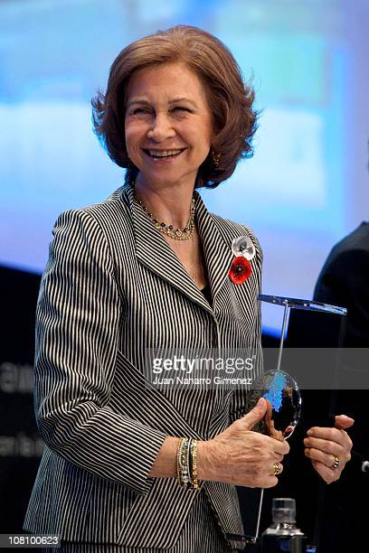 Queen Sofia of Spain attends 'Telefonica Ability Awards' at Telefonica headquarters on January 17 2011 in Madrid Spain