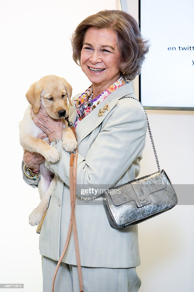 Queen Sofia of Spain attends the 25th anniversary of 'Perro Guia ONCE's Foundation' event on September 24, 2015 in Madrid, Spain.
