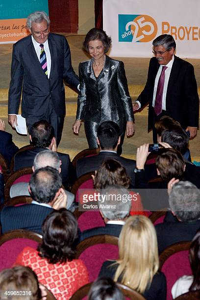 Queen Sofia of Spain attends the 25th anniversary of the 'Proyecto Hombre' association at the Ateneo de Madrid on November 27 2014 in Madrid Spain
