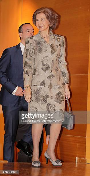 Queen Sofia of Spain attends the opening of the training course on 'Cyber Crime Investigation Against Children' on March 3 2014 in Madrid Spain