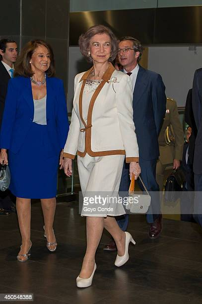 Queen Sofia of Spain delivers youth scholarships to study abroad in her last official act as Queen of Spain on June 13 2014 in Madrid Spain