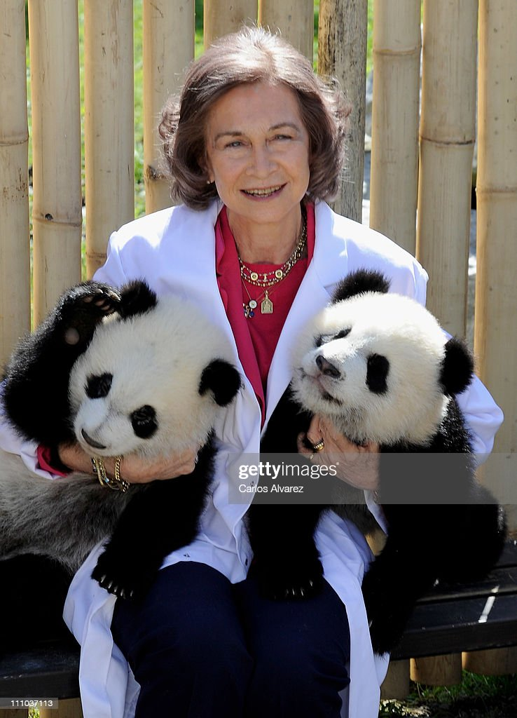 Queen Sofia of Spain poses with panda bears at the Zoo Aquarium on March 29, 2011 in Madrid, Spain.