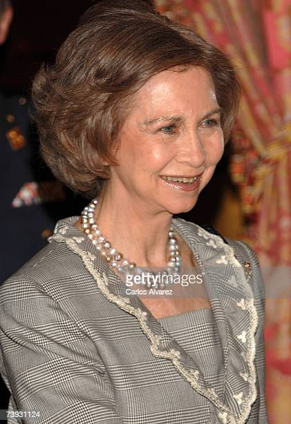 Queen Sofia of Spain receives a representation of Spanish writers on April 20 2007 at the Royal Palace ahead Cervantes Awards in Madrid