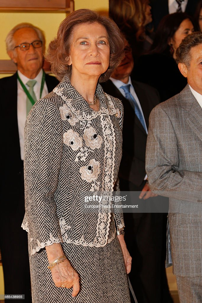 Queen Sofia of Spain visits CEDEL Foundation headquarters on January 27 2014 in Madrid Spain