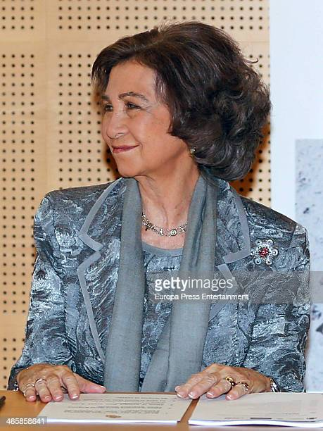 Queen Sofia of Spain visits Neurological Disease Research Foundation CIEN on January 29 2014 in Madrid Spain